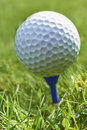 Golf ball close up of resting on blue tee with grass and space for copy Royalty Free Stock Images
