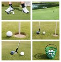 A golf ball collection on green meadow Royalty Free Stock Photography