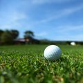 Golf ball on course close up Royalty Free Stock Images