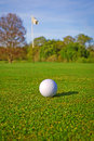 Golf ball on the course with flag Royalty Free Stock Photography