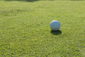 Golf ball on course with green grass Royalty Free Stock Photography
