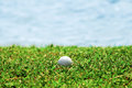 Golf ball on fresh green grass near water bunker. Royalty Free Stock Photo