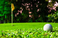 Golf ball getting on green Royalty Free Stock Photo