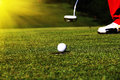 Golf ball in golf course Royalty Free Stock Photo