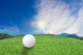 Golf ball on grass nature Royalty Free Stock Photo