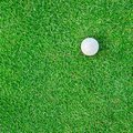 Golf ball on the grass for web background white green Royalty Free Stock Images