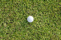 Golf ball on the green Royalty Free Stock Photo