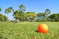 Golf ball on green with beautiful nature scene golf course backg Royalty Free Stock Photo