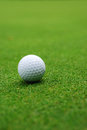 Golf ball on the green blurred background Stock Photos