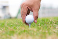Golf ball on green course close up Royalty Free Stock Photos