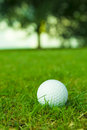 Golf ball on green fairway Stock Photography