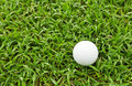 Golf ball on green grass course Royalty Free Stock Image