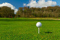 Golf ball on an idyllic course Royalty Free Stock Photos