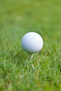 Golf ball and iron on green grass detail macro summer outdoor playing Royalty Free Stock Images