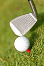 Golf ball and iron on green grass detail macro summer outdoor playing Stock Images