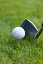 Golf ball and iron on green grass detail macro summer outdoor playing Royalty Free Stock Photo
