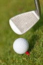 Golf ball and iron on green grass detail macro summer outdoor playing Royalty Free Stock Photos