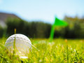 Golf ball laying in rough green grass approaching the tee with flag Stock Photos