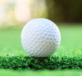 Golf ball on lip of cup selective focus at Royalty Free Stock Photography