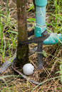Golf ball near the tab water pipe close up dirty Stock Photography