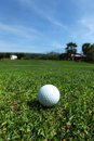 Golf-ball no curso Imagem de Stock Royalty Free