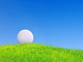 Golf ball put on green grass Royalty Free Stock Photo