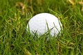 Golf ball in the rough close up of a Royalty Free Stock Image