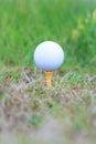 Golf ball on rough grass Royalty Free Stock Photos