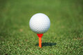 Golf ball with tee Royalty Free Stock Photo