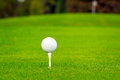 Golf ball on tee in a beautiful club Royalty Free Stock Photography