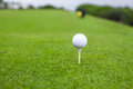 Golf ball on tee in a beautiful golf club see my other works portfolio Royalty Free Stock Image