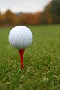 Golf ball on tee with foliage background Royalty Free Stock Photography