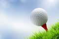 Golf ball on tee a green bury background Royalty Free Stock Images