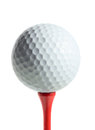 Golf ball on a tee isolated white background Stock Image