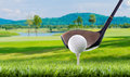 Golf ball on tee pegs in golf course Royalty Free Stock Photo