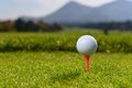 Golf ball on tee shallow dof Royalty Free Stock Images