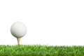Golf ball on tee with white background for copy space Stock Image