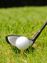 Golf ball on tee a with wood Royalty Free Stock Photo