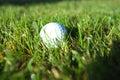 Golf ball on wet lush fairway Stock Image