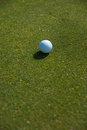 The golf ball white against green grass Royalty Free Stock Photo