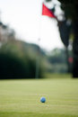 Golf challenge ball on a field white the hole flag Stock Photography