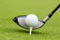 Golf club behind the ball Royalty Free Stock Photo