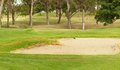 Golf coarse sand bunker Royalty Free Stock Photos