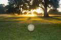 Golf course at dawn waitemata club in devonport auckland Royalty Free Stock Photography