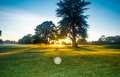 Golf course at dawn waitemata club in devonport auckland Royalty Free Stock Photos