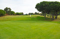 Golf course, green, Andalusia, Spain Royalty Free Stock Photo