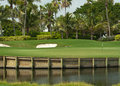 Golf Course Green in Florida 2 Royalty Free Stock Image