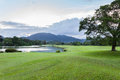 Golf course green grass field with mountain tropical forest. Royalty Free Stock Photo