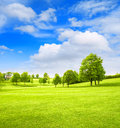 Golf course landscape. Spring field green grass blue sky Royalty Free Stock Photo