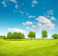 Golf course. Spring field with green grass and blue sky Royalty Free Stock Photo